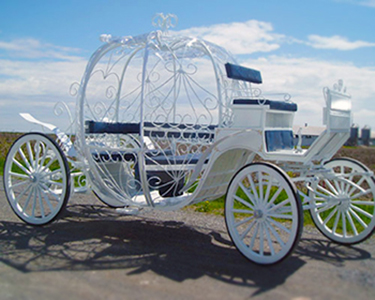 Cinderella Horse Drawn Carriage Vienna Virginia
