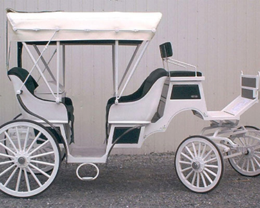 Mini Vis-à-vis Horse Drawn Carriage Oakton Virginia