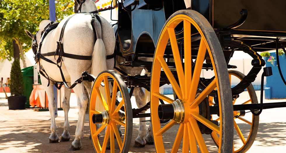 Special Event Carriage Ride